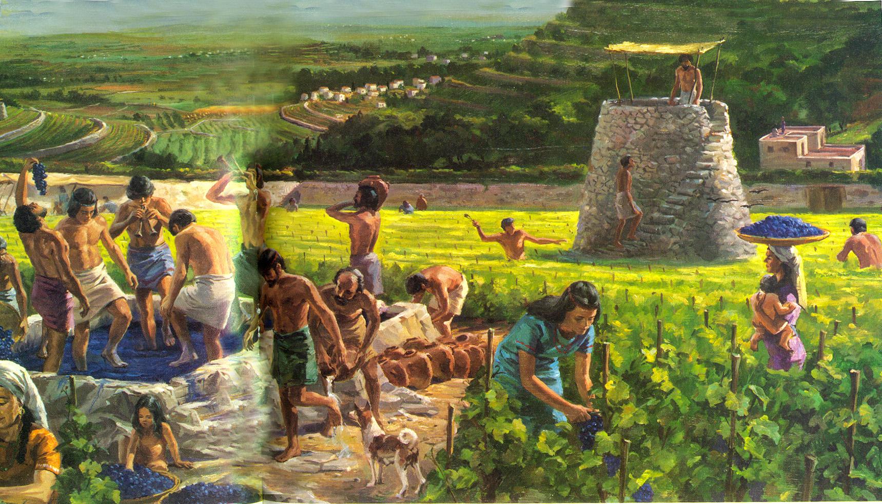 上图:古代以色列收获普通的艺术想象图,右边是瞭望台,左边是压酒池。