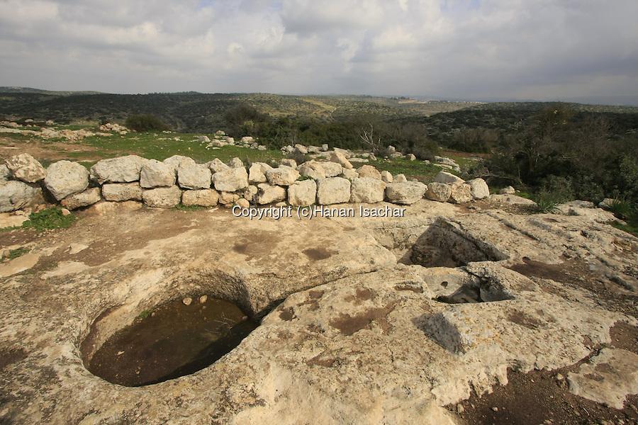 上图:今日以色列的古代压酒池遗迹。酒醡分上下两层酒池,中间有一条通管相连。酒池可能是一块凿空的石头,也可能用砖石砌成。葡萄放在位置稍高的上层酒池中,工人用脚踹葡萄,汁液透过通管流到下层的酒池中。