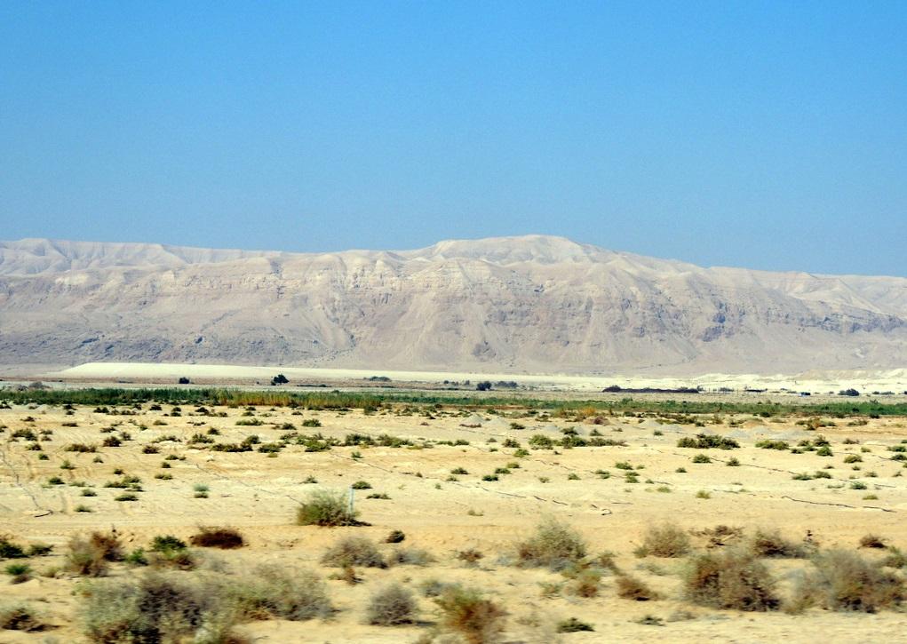 上图:从死海盆地向西看犹大旷野边缘的悬崖。犹大旷野大多地方是「干旱无水之地」(结十九13),几乎寸草不生,是「沙漠有深坑之地,和干旱死荫、无人经过、无人居住之地」(耶二6),但也有许多旱溪有「草场」适合游牧(耶九10),能牧放耐旱的山羊和绵羊。旷野之名Midbar就是「牧放」的意思,大卫少年时就在犹大旷野牧羊(撒上十七28),摩西内兄的后裔「基尼人」也住在犹大的旷野(士一16)。疲乏的旅客走过「旷野中一切净光的高处」时(耶十二12),也许会在枝条细长如棒的「罗腾树」下遮阴(王上十九4,5),或者在枝叶浓密的「杜松」下歇息(耶四十八6),看到「野驴」(伯三十九6;耶二24)在疏落的草木间寻找食物,也会遇见「野山羊」在死海西岸隐基底附近的悬崖出没(撒上二十四2),还可能看到鹈鹕(诗一百零二6)、鸵鸟(哀四3)。今天的犹大旷野人烟稀少,只有贝都因人游牧于此,至今仍保持古代的生活方式。