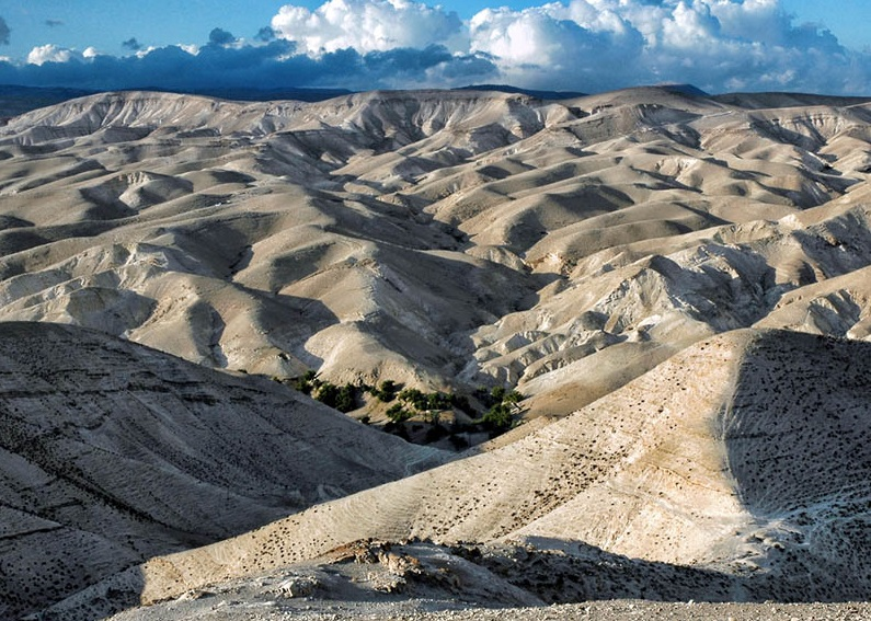 上图:犹大旷野位于犹大山地和约旦河谷之间。从橄榄山东面不远处开始就是绵延的山坡,草木稀疏,人迹罕至,从海拔900多米的犹大山地向东一直下降到海平面以下400多米的死海,南北约长100公里,东西宽约20-25公里。犹大旷野的地势由西至东下降约1300米,开始是许多平滑光秃的白垩山头连绵起伏,溪谷与沟壑纵横交错,靠近死海时逐渐变成陡峭的峡谷,到死海边成为嶙峋的悬崖。犹大旷野位于中央山地分水岭以东,地中海的雨云由西吹来,大部份雨水落在分水岭西面,分水岭东面的犹大旷野非常干旱,又有干燥的东风吹刮,雨季才偶尔有阵雨。在雨季的几个星期,干涸的旱溪(Wadi)中会激流奔涌,旷野中会长出少许植物。 大卫曾在犹大旷野躲避扫罗和押沙龙的追杀(撒上二十三14,24;二十四1;撒下十五23),他将犹大旷野描述为「干旱疲乏无水之地」(诗六十三1)。每年赎罪日,「归于阿撒泻勒的山羊」从圣殿被放到犹大旷野(利十六10)。以西结在异象中看见一条溪流从圣殿流出,经过这片旷野,灌溉两岸繁茂的树木(结四十七1-10)。施洗约翰在死海北面的那片犹大旷野开始传道(太三1-6),主耶稣很可能也在犹大旷野受魔鬼引诱(太四1)。