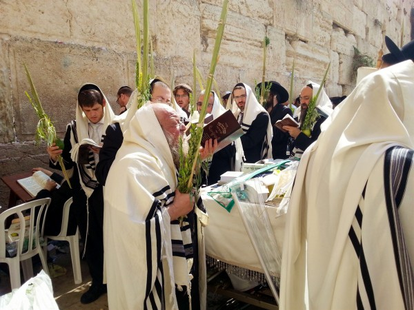 上图:正统犹太人于住棚节(Sukkot)在哭墙手拿棕树枝游行。