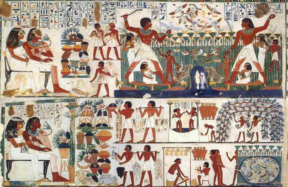 上图:古埃及第十八王朝时期皇家抄写员Nakht(主前1419-1380年)墓中的壁画。图中可以看到主人在狩猎,奴隶在为主人准备食物,埃及人的「肉锅」(出十六3)里主要是禽类、鱼类,而不是牛羊肉。虽然以色列人带着牛羊离开埃及,但古人畜牧的主要目的不是为了吃肉,而是为了剪毛、取奶和献祭。旷野的草很少,也不能维持大量供日常食用的牛羊。所以每次百姓抱怨没肉吃,神总是赐下鹌鹑(出十六13;民十一31),而不是让他们去宰杀牛羊,以色列人通常在献平安祭的时候才有机会吃牛羊肉。