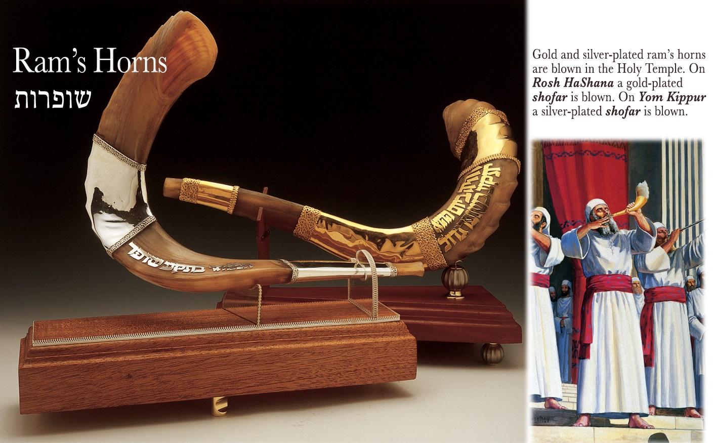 上图:以色列圣殿研究所制作的角(Shofars),用羊角(Ram's Horns)制作,一支包金、一支包银。在圣殿时代,每逢吹角节要吹响包金的角,赎罪日要吹响包银的角。
