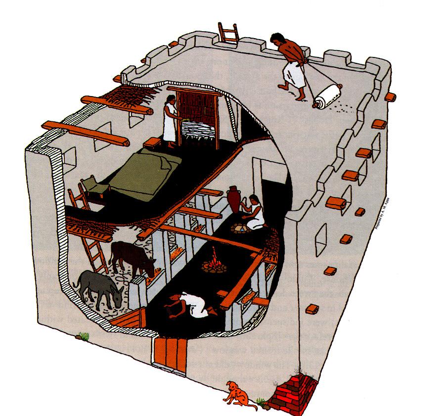 上图:主前1200年左右典型的以色列房子,男主人正在用滚筒刷屋顶。屋顶上有矮墙,温暖的天气可以用作额外的吃饭、工作、睡觉的场所。雨季之后,屋顶需要重新用灰泥刷一遍。