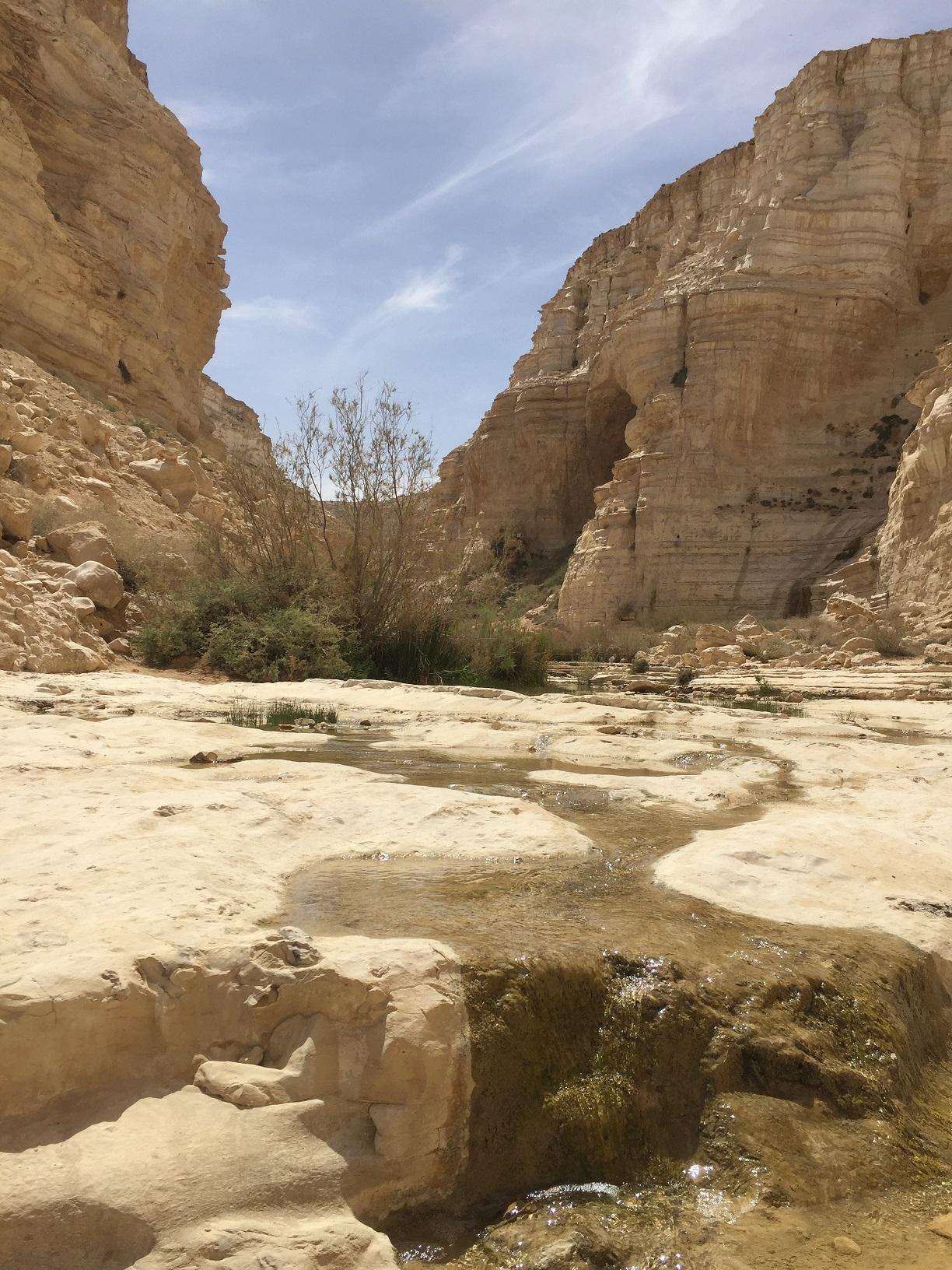上图:在以色列南地汛的旷野(Zin Valley),方圆几十公里只有这一条小溪(Ein Avdat)。生活在环境宜人、水源丰富的地区,我们很难理解溪水的宝贵和令人渴慕,只有经历过干旱与炎热,才能理解诗人所说的:「神啊,我的心切慕祢,如鹿切慕溪水」(诗四十二1)!