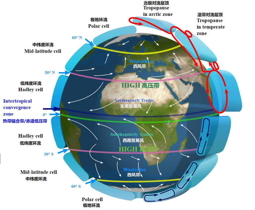 上图:现代科学家发现的地球的大气环流(Atmospheric circulation)模型,证明「风往南刮,又向北转,不住地旋转,而且返回转行原道」(传一6)。大气环流是地球表面大规模的空气流动,重新分配了地球上的热量和水汽,地球上的风带和天气现象主要由极地环流(Polar cell)、中纬度环流(Ferrel cell)和低纬度环流(Hadley cell)三个大环流相互作用而产生。