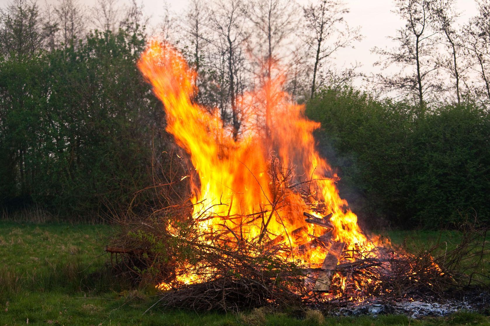 上图:焚烧「荆棘和蒺藜」,被焚烧的不是田地,而是田地里长出的「荆棘和蒺藜」。因此,来六8不是指真信徒会因犯罪而失去救恩,而是指被神管教。