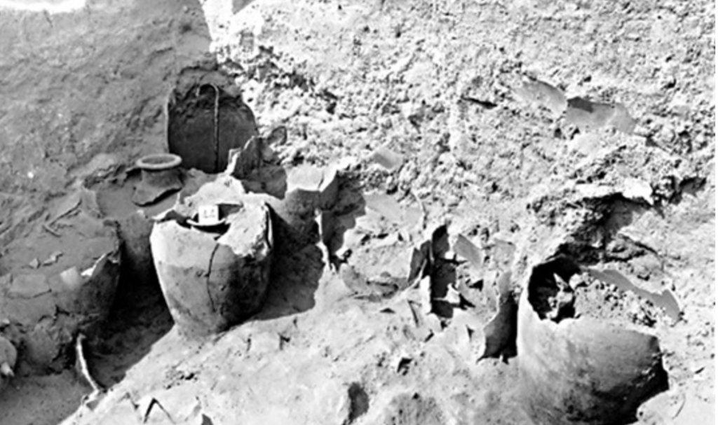 上图:1930年代,英国考古学家John Garstang在耶利哥废墟发现了许多装满碳化谷物的陶罐。古埃及军队的战术是在收割之前围城,这样城中的储粮最低;攻取城市后也会掠走所有粮食,不会留下这么多谷物。因此,这些谷物没被掠走,在迦南地的考古中非常罕见,但却与圣经的记载一致:1、当时是逾越节,谷物刚被收割,城中有大量储粮;2、以色列人突然过了约旦河,「耶利哥的城门因以色列人就关得严紧,无人出入」(书六1),没来得及带着粮食逃走;3、耶利哥被围7天就陷落,所以剩下了许多谷物;4、以色列人遵守神的命令,「用火将城和其中所有的焚烧了」(书六24),并没有留下粮食当战利品。然而,1995年对这些谷物进行放射性碳定年的结果,却是主前17世纪晚期或16世纪,比以色列人主前1407年进迦南的时间早了100年。