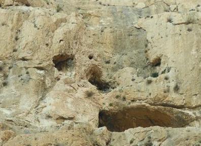上图:Wadi Rummananeh峡谷的峭壁上布满了小岩洞,就像一个个石榴。「临门」的意思就是「石榴」,临门磐的地点不能确定,但可能就是类似的岩洞,六百名劫后余生的便雅悯人藏身在岩洞里(士二十45),易守难攻。