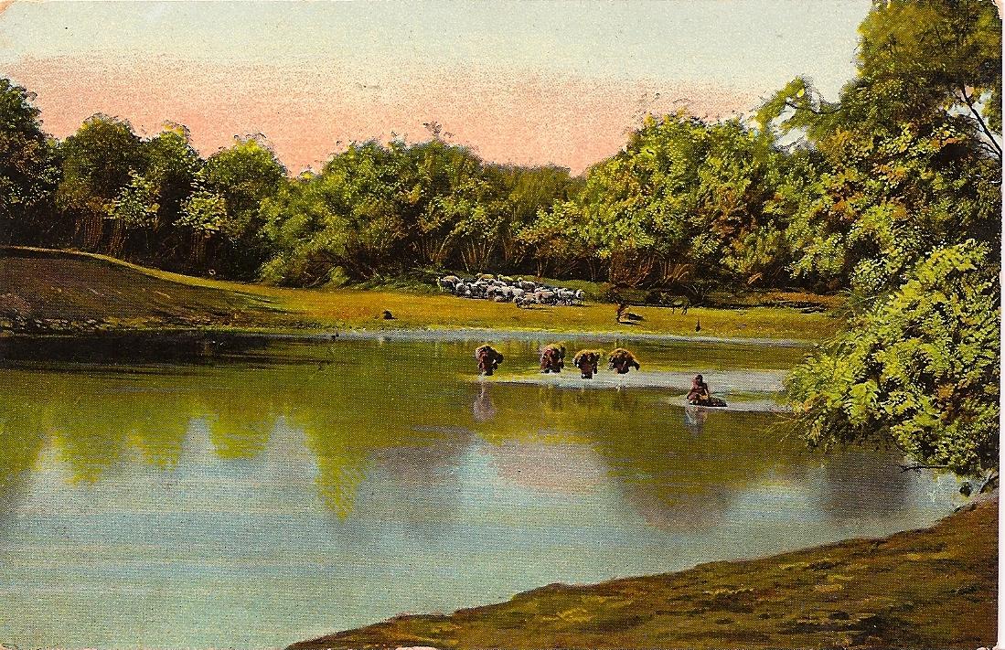 上图:约旦河的一个渡口,可以涉水过河。