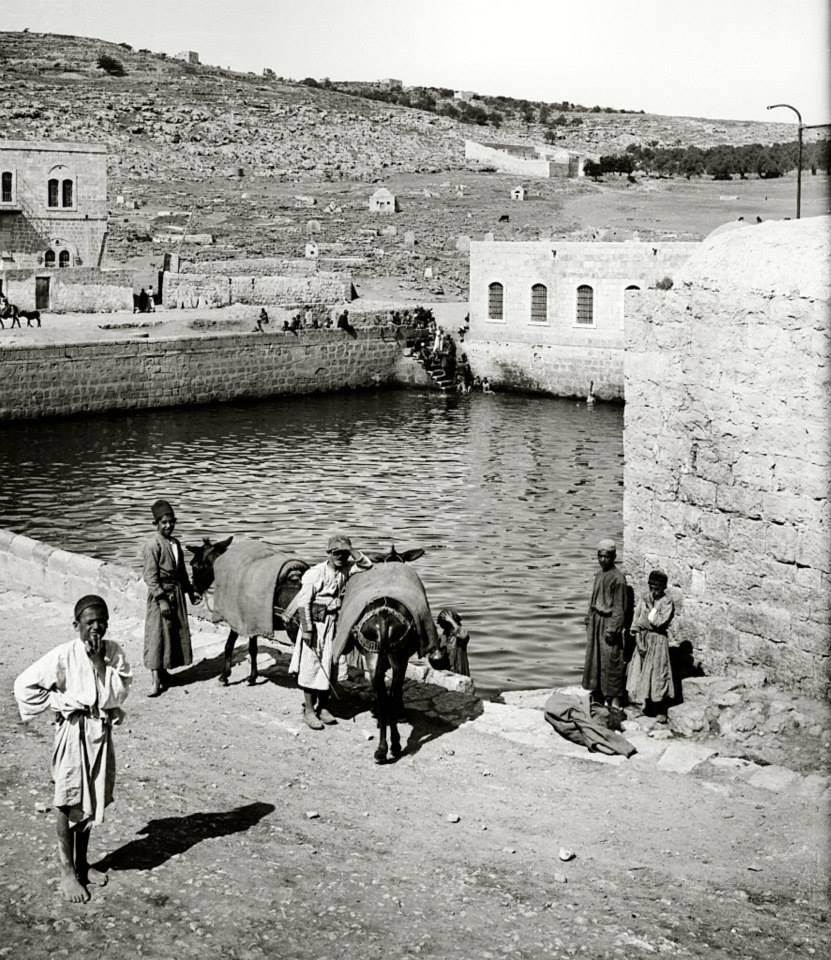 上图:十三世纪埃及苏丹嘉拉温(Al-Mansur Qalawun)所建的希伯仑池,是公众聚集的地方。大卫时代的希伯仑池可能也是如此。
