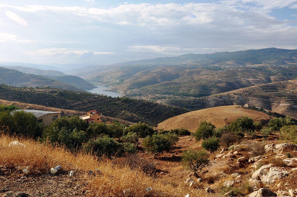 上图:约旦河东雅博河两岸山峦起伏,「以法莲树林」(撒下十八6)可能位于这片丘陵地带。