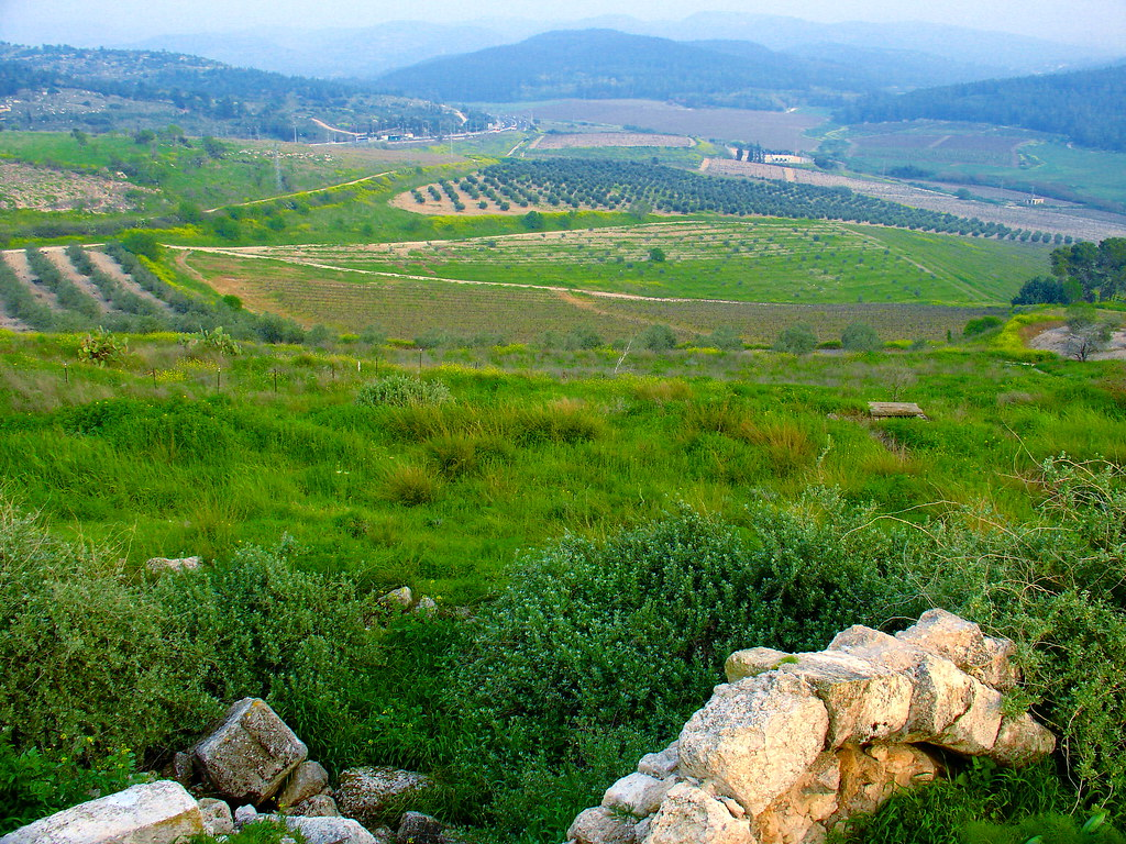 上图:从Latrun废墟俯瞰亚雅仑谷(Ayalon or Aijalon Valley)。