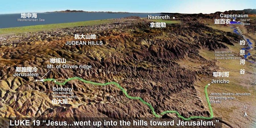 上图:主耶稣从耶利哥走到耶路撒冷的路线(路19:18),这是当时大部分前往耶路撒冷守节的以色列人所走的上行山路。