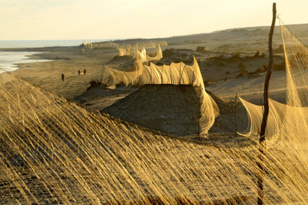 上图:埃及人在地中海的海滩上架起两米高的网罗,横跨尼罗河,绵延几公里,大量捕杀飞越地中海低飞的侯鸟。