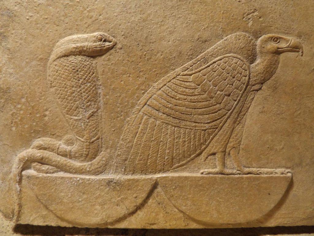 上图:古埃及浮雕上的的秃鹫和蛇。眼镜蛇乌拉厄斯(Uraeus)是女神瓦吉特(Wadjet)的象征,瓦吉特是下埃及的守护神,上下埃及统一后,与上埃及的秃鹫女神奈赫贝特(Nekhbet)一起成为埃及的守护神。埃及眼镜蛇(Egyptian Cobra)每次咬击,平均释出175至200毫克毒素,其毒之猛仅次于菲律宾眼镜蛇,但却更加致命,因为埃及眼镜蛇的体型较大、较具攻击性、释出蛇毒更多。