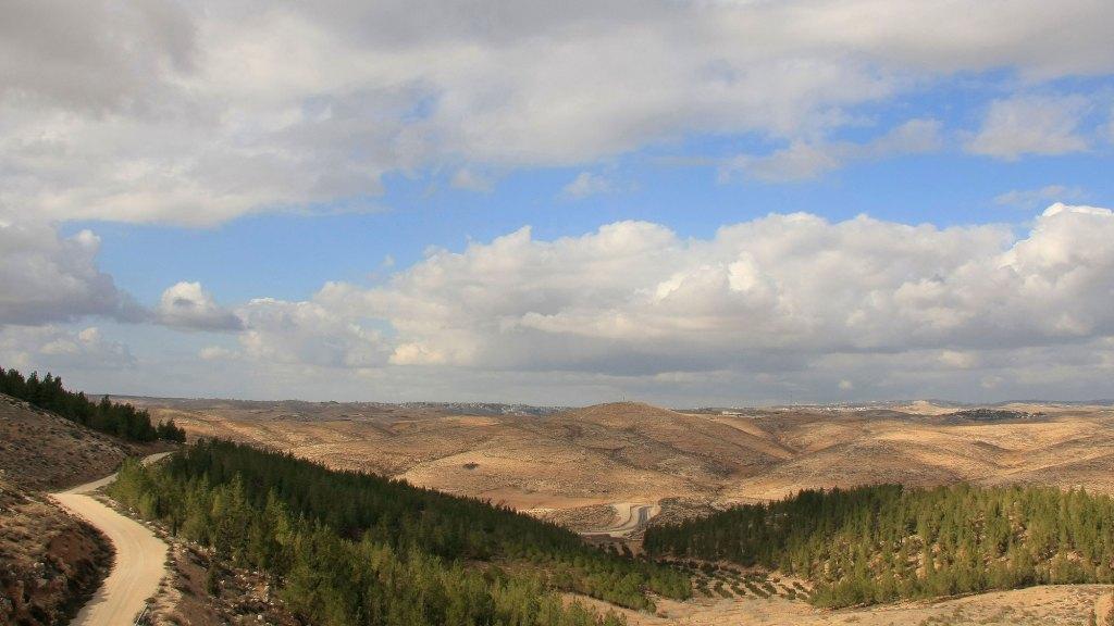 上图:以色列南地沙漠的Yatir森林是以色列最大的人工树林,位于别是巴附近,400万棵树分布在7400英亩的希伯仑山南坡。