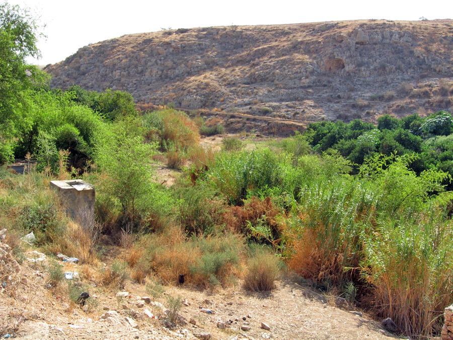 上图:发拉河(阿拉伯名Wadi al-Far'a)或得撒河(希伯来名Nahal Tirzah) ,是约旦河西岸最大的河流,向东流入约旦河。