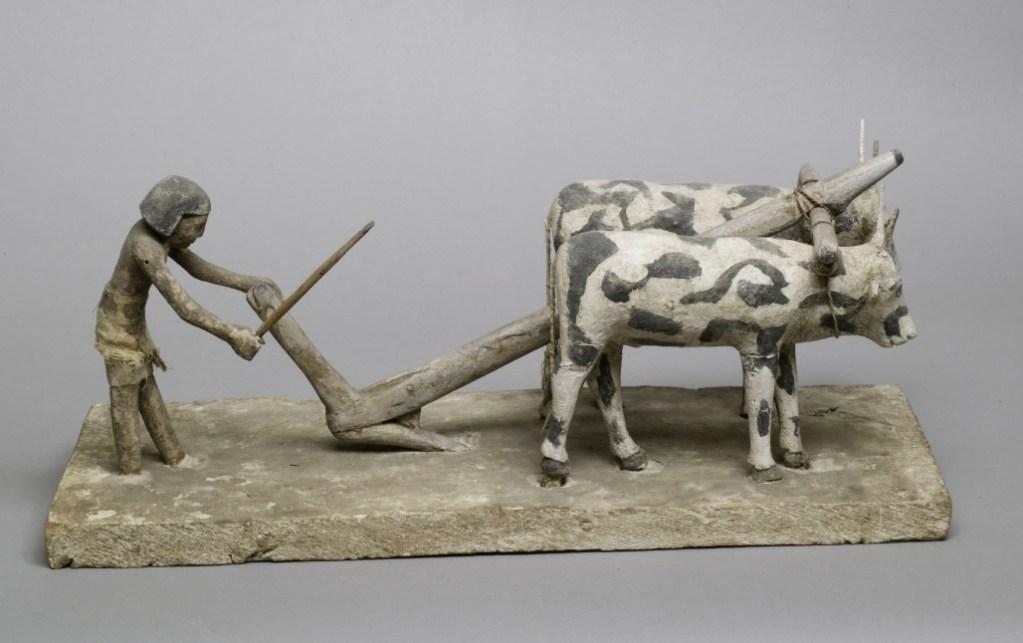 上图:古埃及第十二王朝时期(主前1981-1885年)的木雕,描绘一个耕地的农夫,牛背上负着轭,现藏于大都会博物馆。「轭」指加在牛后颈上的横木,用来驱使牲畜。「巴比伦王的轭」(耶二十七8)比喻巴比伦的统治。
